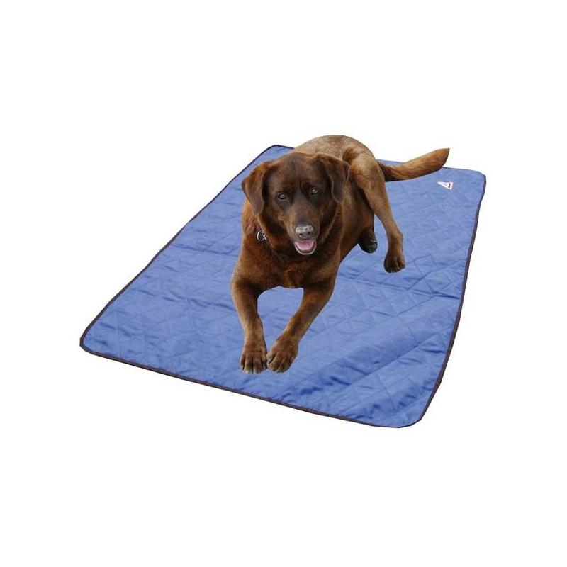 Tapis rafra chissant hyperkewl pour chien et chats - Tapis de course pour chien ...