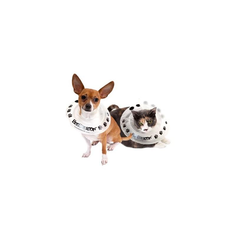 collier-boobooloon-accessoire-pour-chien.jpg