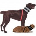 collier collerette chat chien alternative minerve Bitenot Mikan