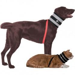 Collier BITENOT - Accessoire pour chien et chat