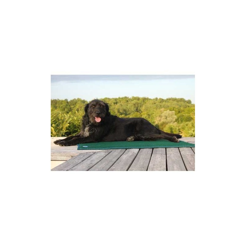 Tapis de confort sleepy dog