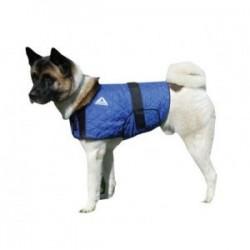 manteau rafraichissant hyperkewl chien et chat