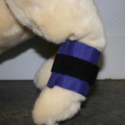 Poids de jambe pour animaux