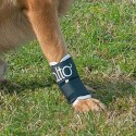 Attelle rigide immobilisante du carpe pour chien chats Balto Mikan