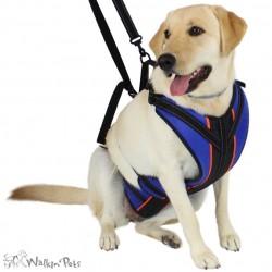 Harnais total Walkin'Pets pour chien