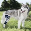 Genouillère articulée pour chien Balto Ligatek