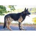 Attelle rigide articulée pour chien chat réglable Walkin Pet's Mikan