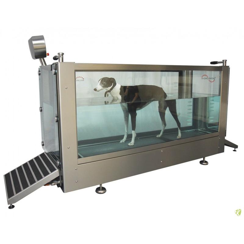 Tapis roulant immergé Canine