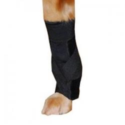 Attelle du coude et carpe sur-mesure pour chien