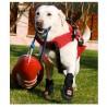 Bottine renforcée pour chien Thera-Paw