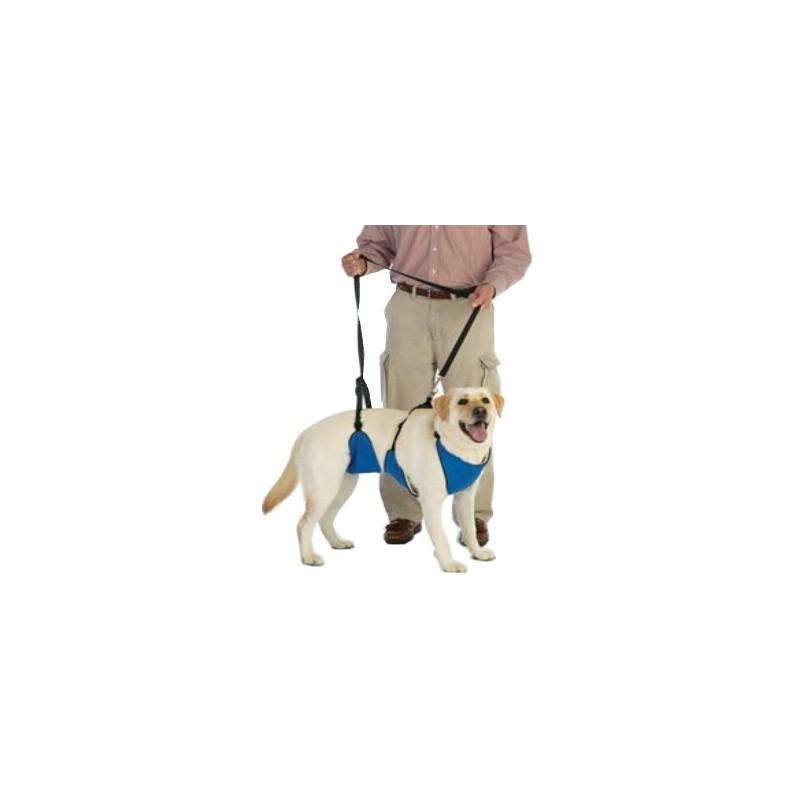 harnais-total-avant-arriere-chien-handicape.jpg