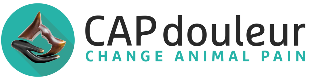 Logo partenaire centre de formation Capdouleur