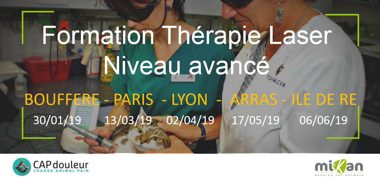 formation therapie laser niveau avance