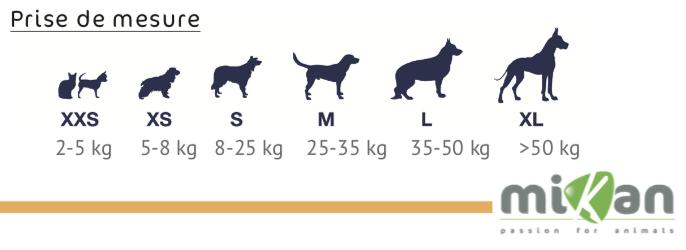 Prise de mesure attelle chien chat