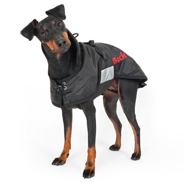 Manteau d'extérieur chiens et chats - Back on Track
