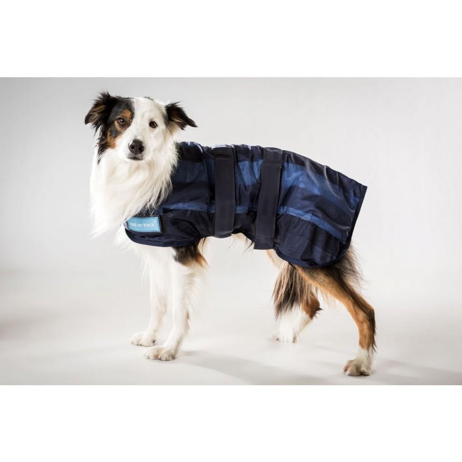 manteau-rafraichissant-pour-animaux-cool-on-track-mikan