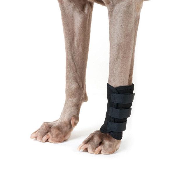Protection de pattes/chaussures-pour-chien-protection-coussinets-paws-