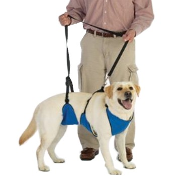 harnais total avant arrière pour chien
