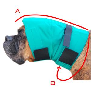 Prise de mesure snood chien protège oreilles