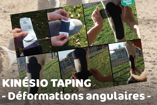 deformation-angulaire-jambe-poulain-taping-mikan